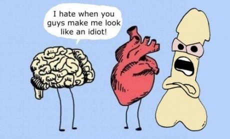 brain-heart-i-hate-when-you-guys-make-me-look-like-an-idiot-493f0ed0-sz460x278-animate